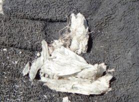 アスベスト屋根は危険?|岡崎市・西尾市の外壁塗装専門店カナルペイント