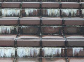 エフロレッセンスとは?|岡崎市・西尾市の外壁塗装専門店カナルペイント